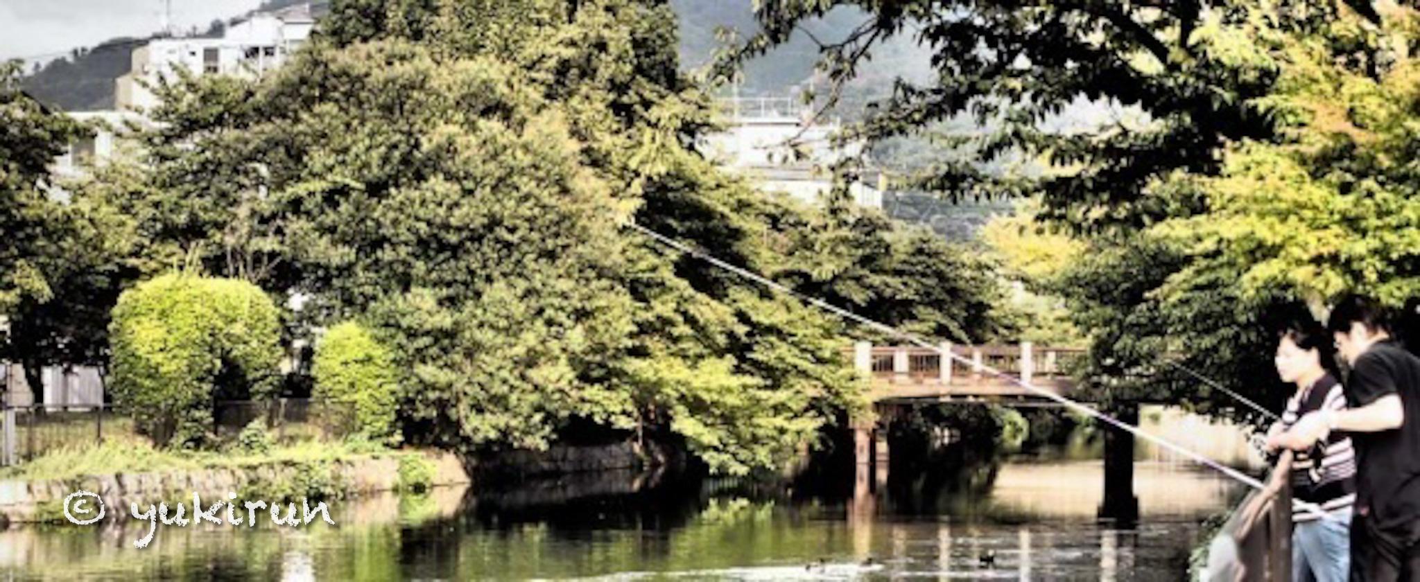 京都で釣り